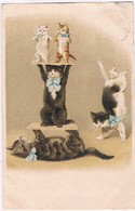 Chats Humanisés  - Cat -  Katze-  Poezen Acrobaten -reliëf - Katten