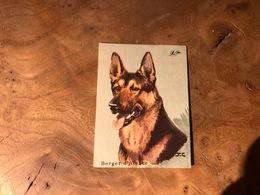 320/ BON POINT 1964 BERGER D ALSACE - Old Paper