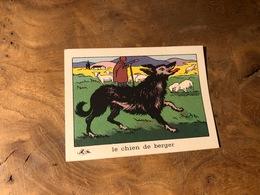 320/ BON POINT 1964 LE CHIEN DE BERGER - Old Paper