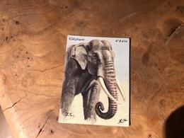 320/ BON POINT 1964 ELEPHANT  D ASIE - Vecchi Documenti