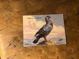 320/ BON POINT 1964 PIGEON VOYAGEUR - Old Paper
