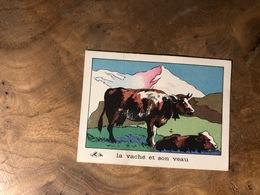 320/ BON POINT 1964 LA VACHE ET SON VEAU - Old Paper