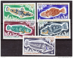 TAAF    34 38  Poissons   Neuf ** MNH Sin Charmela Cote 26 - Tierras Australes Y Antárticas Francesas (TAAF)