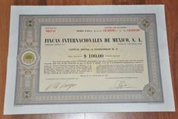 Fincas Internacionales De Mexico, S.A. - 1972 - 100 Acciones. - Bank En Verzekering