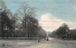 Belgium Tervueren L'Avenue De Tervueren Road Postcard - Belgique