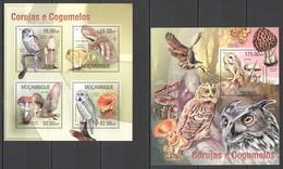 ST2546 2013 MOZAMBIQUE MOCAMBIQUE FLORA & FAUNA MUSHROOMS BIRDS OWLS CORUJAS KB+BL MNH - Uilen