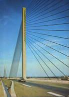Germany - Postcard  Unused  - Bonn -  Ebert Bridge - Bonn