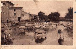 CPA,La Seille-Nomény, Les Moutons à L'abreuvoir - Nomeny