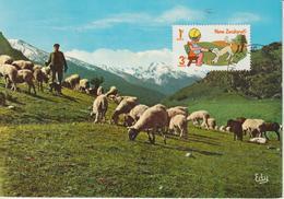 Nouvelle Zélande Carte Maximum 1975 Mouton 639 - Lettres & Documents