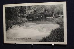 G-302 / Liège, Hamoir-s-Ourthe Pont Rustique Sur Le Cours Pittoresque Du Néblon  / Circulée 1949 - Hamoir