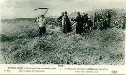 PAYSAN BELGE, LE MOISSONNEUR - 1914-18