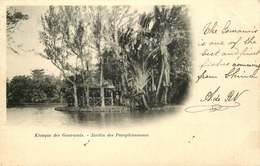 AFRIQUE  ILE MAURICE   Jardin Des  Pamplemousses - Mauritius