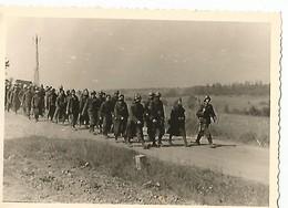 Orig Photo All WW2 : Capture De Prisonniers , Colonne  : Campagne De France .  LAMETZ ( 08 Ardennes . )  Juin 1940 - 1939-45
