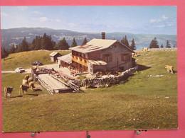 Visuel Très Peu Courant - Suisse - Chalet Restaurant Dent De Vaulion - Mont Tendre Et Vallée De Joux - Scans Recto Verso - VD Vaud