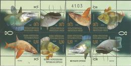 BHRS 2019- FISH, BOSNA AND HERZEGOVINA REPUBLIKA SRBSKA, MS, MNH - Bosnien-Herzegowina