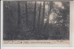 76  -YPORT - Dans Les Bois Des Ferrières..1918 - Yport