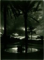 AFRICA - LIBIA / LIBYA - TRIPOLI - PANORAMA DELLA GAZZELLA - NOTTURNO - FOTO AULA - Prototype  POSTCARD - 1957 (BG6715) - Libya