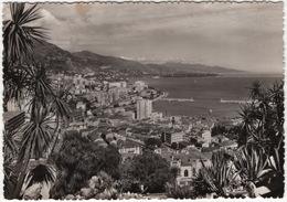 Monaco - Monte-Carlo - Vue Générale Et Le Port - Cactus - Harbor