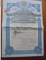 EGYPTE - ALEXANDRIE 1927 - THE ALEXANDRIA AND RAMLEH RAILWAY CIE - TITRE DE 10 £ - BELLE VIGNETTE - Non Classés