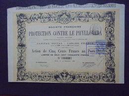 FRANCE -  PARIS 1886 - PROTECTION CONTRE LE PHYLLOXERA - ACTION DE 500 FRS - BELLE ILLUSTRATION DE CLAVERIE - Azioni & Titoli