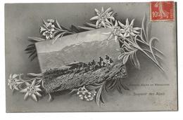CPA CHASSEURS ALPINS - Souvenir Des Alpes - Batterie Alpine En Manoeuvres - Regiments