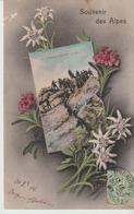 C. P. A.. - SOUVENIR DES ALPES - CHASSEURS ALPINS DANS LES ALPES - FLEURS -  G. COURTIN - GRENOBLE - - Regiments