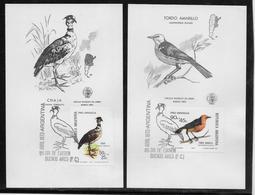 Argentine N°941/942 - Oiseaux - Carte Maximum - TB - Argentina