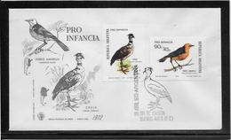 Argentine N°941/942 - Oiseaux - Enveloppe 1er Jour - TB - Argentina