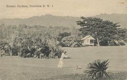 Botanic Gardens , Dominica B.W.I.  Edit Bridgwater Roseau  . Lawn Mower . Tondeuse à Gazon Manuelle - Dominique