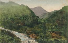 Roseau Valley Dominica Hand Colored  Edit Bridgwater Roseau - Dominique