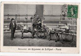 CURIOSITE * ROYAUME DE LILLIPUT * PARIS * SOUVENIR * ATTELAGE CHEVAUX * CIRQUE - Other Famous People