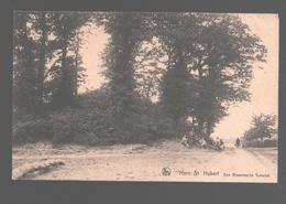 Sint-Huibrechts-Hern / Hern St. Hubert / Hoeselt - Een Romeinsche Tumulus - Hoeselt