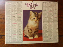 Calendrier, Almanach Des P.T.T. 1977 - Jeune Chat, Jument Et Poulain - Autres