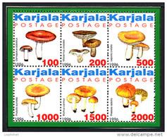 KARELIA KARJALA CARELIE 1996, CHAMPIGNONS B / MUSHROOMS, FANTAISIE / CINDERELLA, 6 Valeurs, Neufs / Mint. R936 - Vignettes De Fantaisie