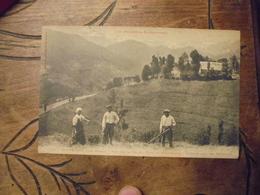 Rieupregon  Massat Vallée Fond Du Mont Vallier  Fenaison Céréale Agriculture - Cultures