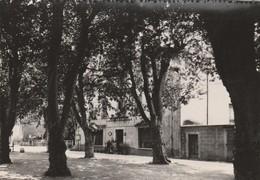 CPSM  04 RIEZ STATION ESTIVALE HOTEL DES ALPES - France
