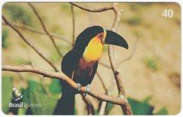 BRASIL J-348 Magnetic BrasilTelecom - Animal, Bird, Toucan - Used - Brasilien