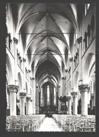 Sint-Gillis-Waas - Binnenzicht Kerk - Echte Foto - Sint-Gillis-Waas