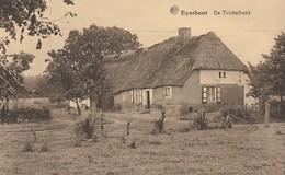 Eynthout  , Eindhout , De Trichelhoek - Laakdal