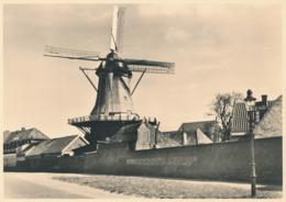 Nederland - 1946 - Molen Serie 2 - Harderwijk Bovenkruier - Foto-briefkaart G285b Ongebruikt - Postal Stationery