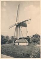 Nederland - 1946 - Molen Serie 3 - Scherpenzeel Standaardmolen - Foto-briefkaart G285c Ongebruikt - Ganzsachen