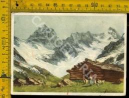 Sondrio Alpe Ventina Dalla Capanna Porro - Sondrio