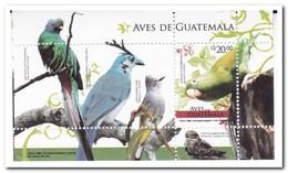 Guatemala 2008, Postfris MNH, Birds - Guatemala
