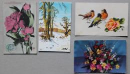 Lot De 4 Cartes : Pivoines, Paysage D'hiver, Oiseaux, Fleurs - Postcards