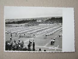 Serbia / Subotica ? -Sokolski Slet, 1936. Foto: V.BENČIĆ ( Photopostcard ) - Servië
