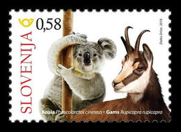 Slovenia 2019 Mih. 1398 Slovenes In Australia. Fauna. Koala And Chamois MNH ** - Slovénie