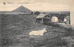 WATERLOO - La Plaine De Waterloo - Waterloo