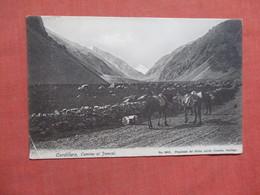 Cordillera Camino Al Funcal          Ref 3764 - Chile
