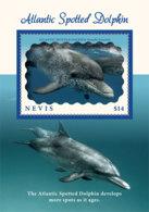 Nevis  2019  Fauna  Atlantic Spotted Dolphin  I201903 - St.Kitts Und Nevis ( 1983-...)