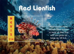 Nevis  2019  Fauna  Red Lionfish  I201903 - St.Kitts-et-Nevis ( 1983-...)